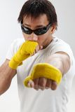 young boxer Royalty Free Stock Images