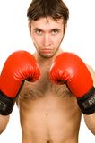 Young boxer Stock Photos
