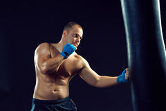 Young Boxer boxing Stock Images