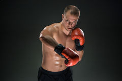 Young Boxer boxing Stock Image