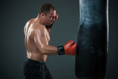 Young Boxer boxing Royalty Free Stock Photos