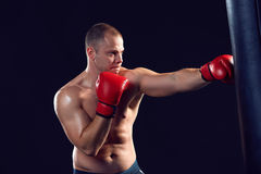 Young Boxer boxing Stock Photo