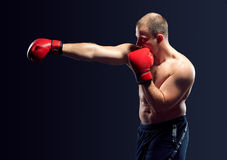 Young Boxer boxing Royalty Free Stock Photo