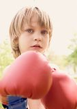 The young boxer Stock Photography