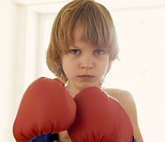 The young boxer Royalty Free Stock Images