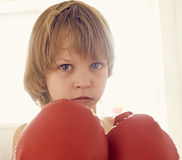 The young boxer Stock Images