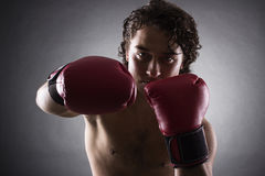 Young Boxer fighter Royalty Free Stock Image