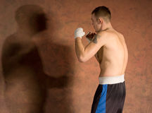 Young boxer in fitness training working out Stock Image