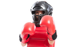 Young boxer girl with equipment Stock Photos