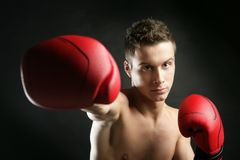 Young boxer man isolated on studio Royalty Free Stock Photos
