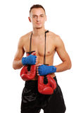 Young boxer man isolated on white background Royalty Free Stock Photos