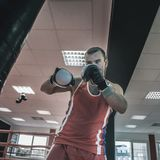 Young boxer sportsman performs sports exercises with a boxing pe stock image