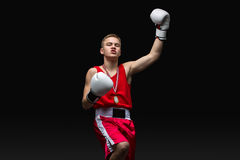 Young boxer sportsman in red sport suit Royalty Free Stock Image