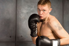 Young boxer with a tattoo working out Stock Images