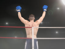 Young boxer with two hands up in the ring. Male boxing champion in blue shorts standing in the ring under floodligths raising hands after victory, back view royalty free stock photography