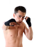 The young boxer on a white background.  Stock Photography