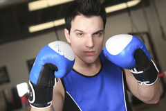 Young boxer who training for his fight Stock Image