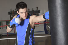 Young boxer who training for his fight Stock Photography