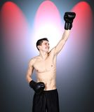 Young boxer winner Stock Photography