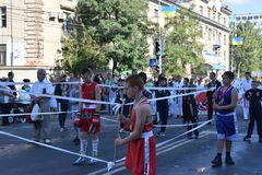 Young boxers demonstrate the fascination. Boys teenagers in a boxer sporting form on an impromptu ring demonstrate the abilities in the process of municipal Stock Images
