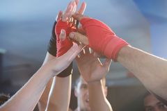 Young boxers giving high-fives royalty free stock photography