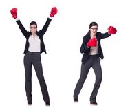 The young boxing businesswoman isolated on white Stock Images