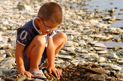 Young boy. Playing on the river Royalty Free Stock Photos