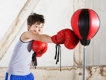 Young boy as a boxer. Young boy with red boxing gloves Stock Photography