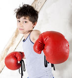 Young boy as a boxer. Young boy with red boxing gloves Stock Images
