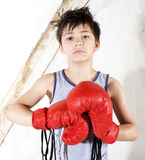 Young boy as a boxer. Young boy with red boxing gloves Royalty Free Stock Photo