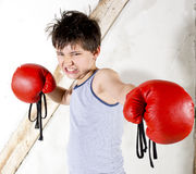 Young boy as a boxer. Young boy with red boxing gloves Royalty Free Stock Photos