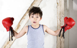 Young boy as a boxer. Young boy with red boxing gloves Stock Image