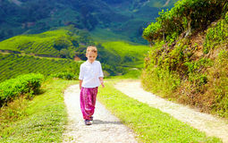 Young boy in asian style clothes walking tea plantation Stock Photo