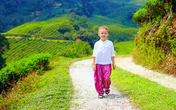Young boy in asian style clothes walking tea plantation Stock Photos