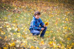 Young boy on park collect the bouquet with yellow leaves. Young boy on autumn park collect the bouquet with yellow leaves, empty space for text royalty free stock photo