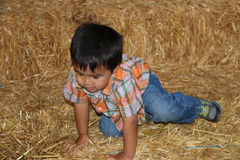 Young boy on a bale of hay. Royalty Free Stock Photos