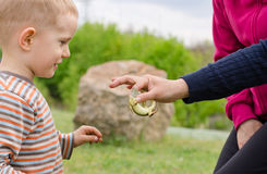 Young boy being handed a live green lizard Royalty Free Stock Photo