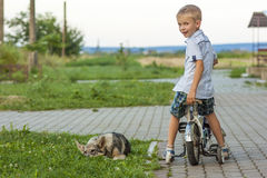 Young boy on a bicycle and sleeping dog Royalty Free Stock Photos