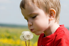 Young boy blowing royalty free stock photo