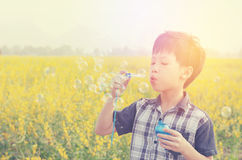 Young boy blowing bubbles in field stock photos