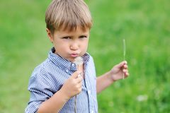 Young boy blowing dandelion Stock Photo