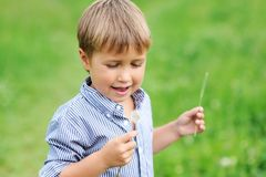 Young boy blowing dandelion Royalty Free Stock Photos