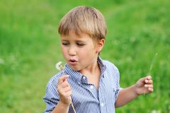 Young boy blowing dandelion Royalty Free Stock Photography