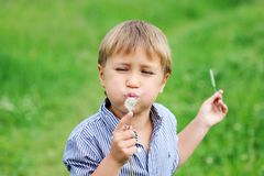 Young boy blowing dandelion Royalty Free Stock Photo