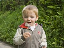 Young boy blowing dandelion seeds. Three year old male blows the tiny parachute seeds from a dandelion weed flower stem royalty free stock image
