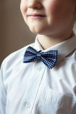 Young boy with blue bow tie. Smiling young boy with blue bow tie, portrait with copy space. Classical education or music for children concept Stock Photography