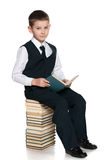 Young boy with a book is sitting on the pile of books Stock Photo