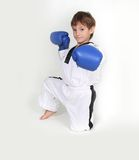 Young boy boxer Royalty Free Stock Photos
