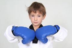 Free Young Boy Boxer Stock Image - 22038621