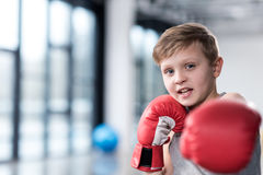 Young boy boxer in red boxing gloves Stock Image